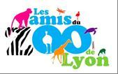 logo les amis du zoo de Lyon
