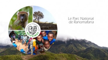 Le Parc National de Ranomafana