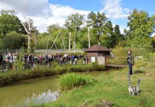 Retour sur une belle journée au Zoo de Thoiry
