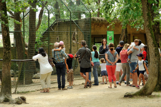 Week-end Helpsimus au Zoo African Safari !
