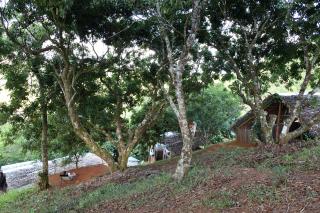 Le camp de Vohitrarivo en images