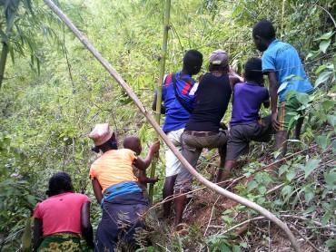 Familles, forêts et grands hapalémurs : tous unis ! – la suite 1