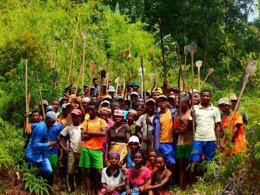 Campagne de reboisement et de restauration forestière 2020 : 1er bilan