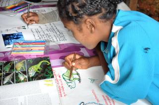 Le programme d'éducation environnemental : bilan de la première année !