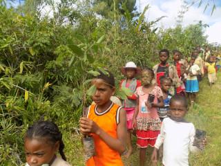 Lancement de la campagne de restauration forestière 2021