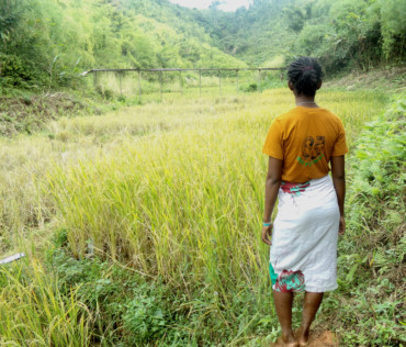 Gardiennage des rizières 2020-2021 : bilan de la campagne de grande saison