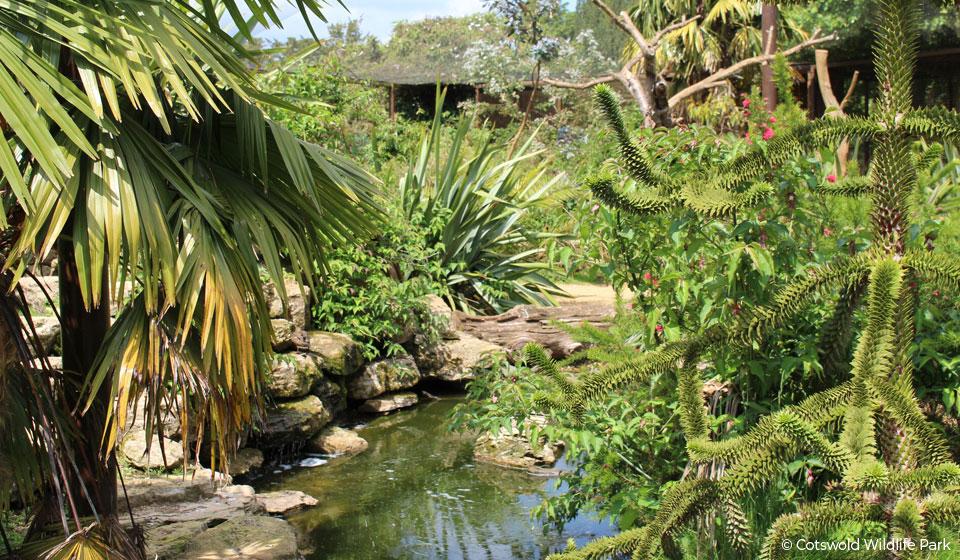 lemur-enclosure1